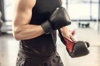 cropped shot of muscular sportsman wearing boxing gloves in gym