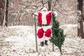 Santa Claus dělá push up v lese