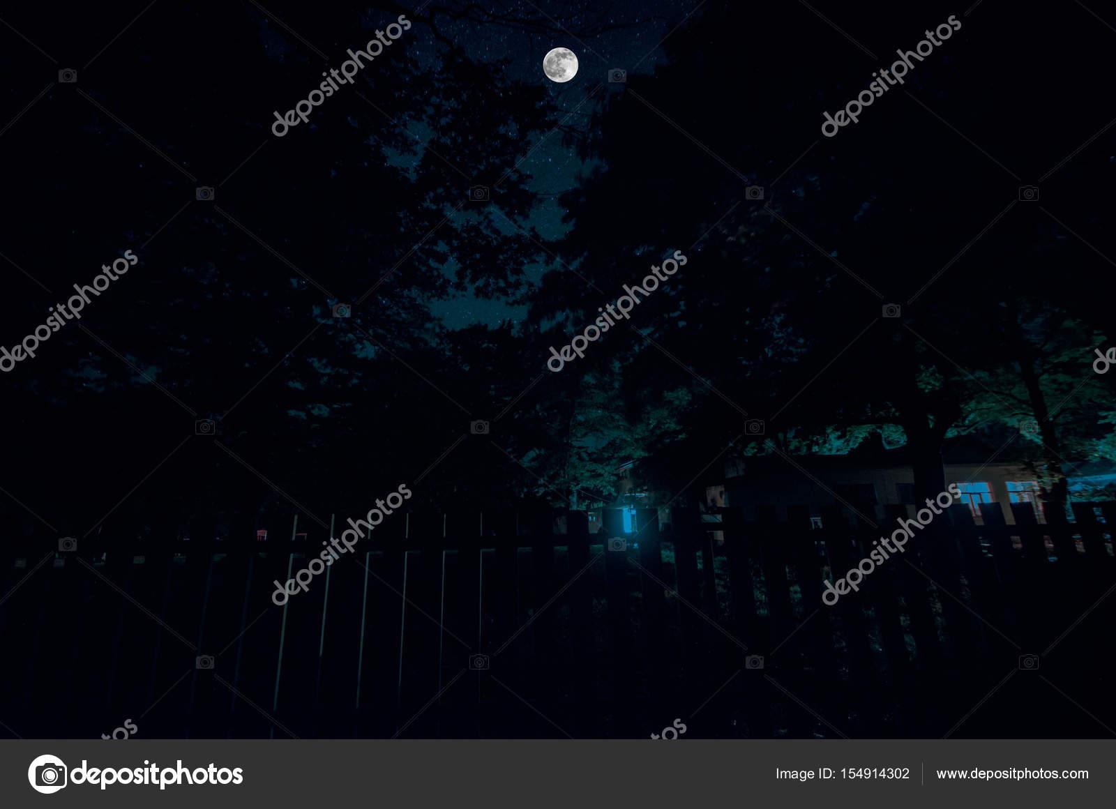 4652d526d3 Route de montagne à travers la forêt par une nuit de pleine lune.  Panoramique de nuit, paysage de ciel bleu foncé avec la lune.