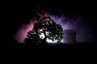 Old house with a Ghost in the forest at night or Abandoned Haunted Horror House in fog. Old mystic building in dead tree forest. Trees at night with moon. Surreal lights