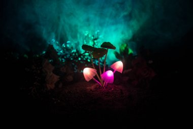 Three fantasy glowing mushrooms in mystery dark forest close-up. Beautiful macro shot of magic mushroom or three souls lost in avatar forest. Fairy lights on background with fog.