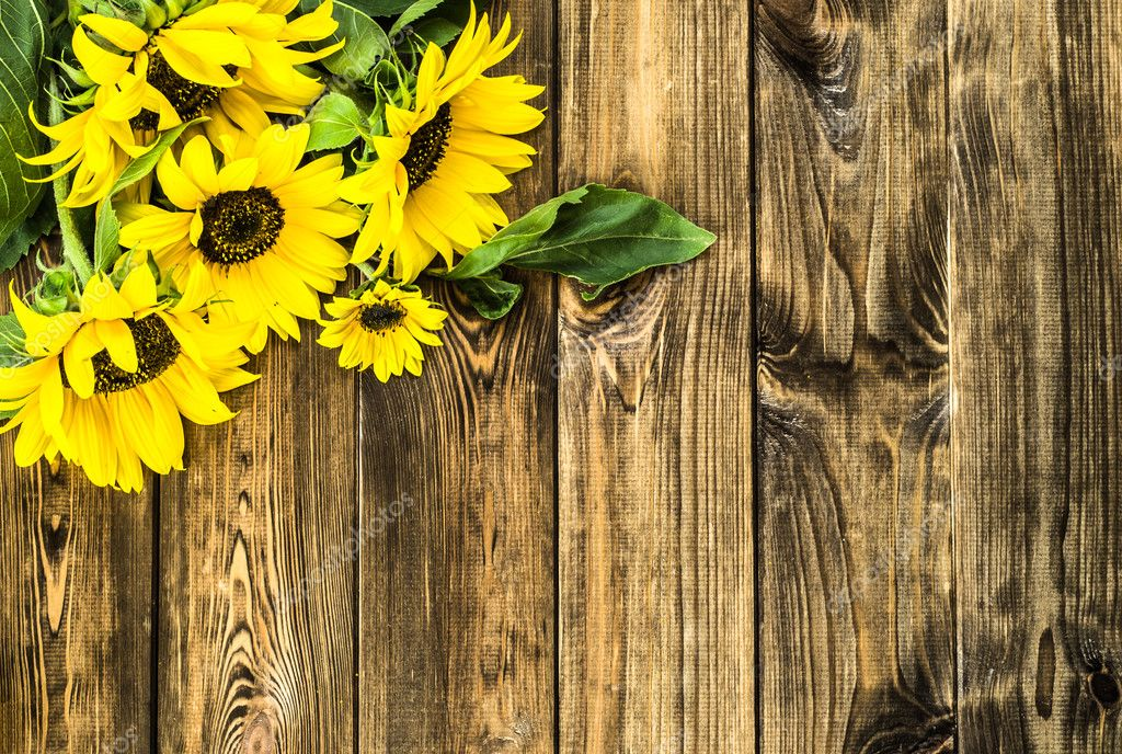 Sunflowers On Rustic Wood Background Flowers Backgrounds Stock Photo
