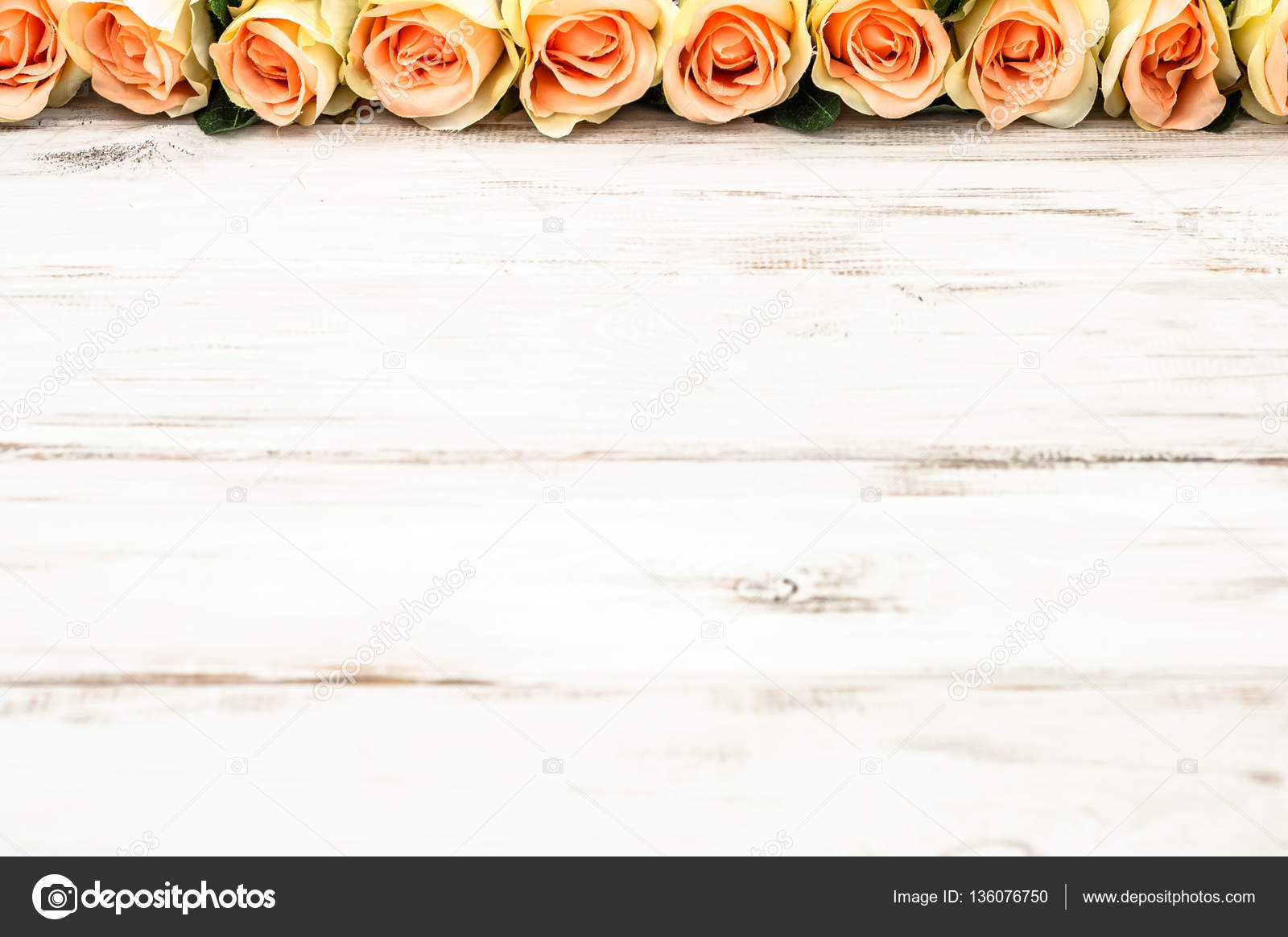 Pink roses on white wooden background, flowers frame for valentine ...