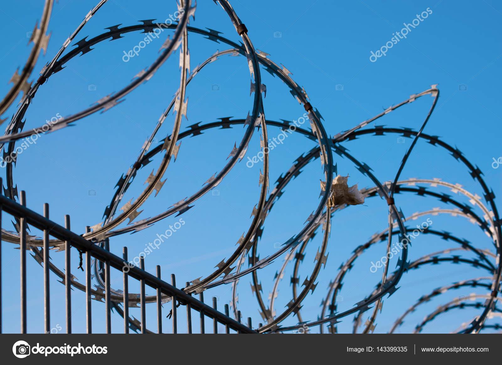 Barbed wire fence on blue sky background — Stock Photo © alicjane ...