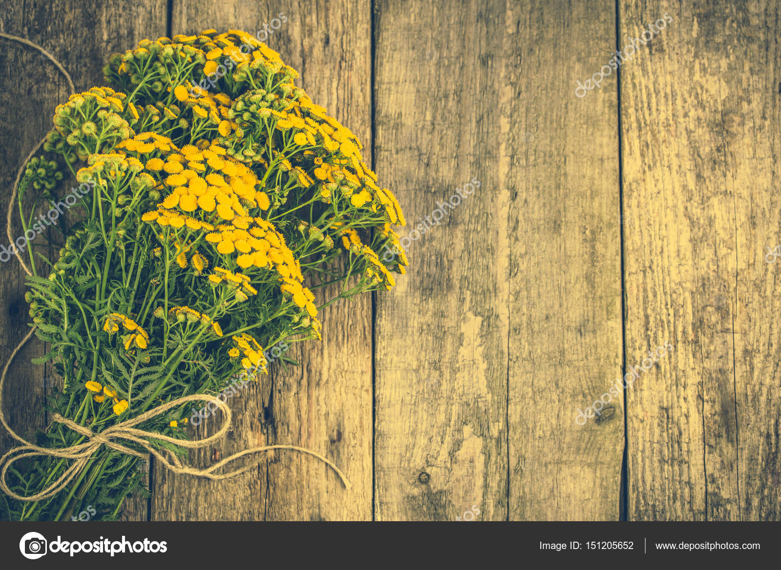 Yellow Flowers From Summer Meadow Rustic Bouquet Located On Wooden Background Stock Photo