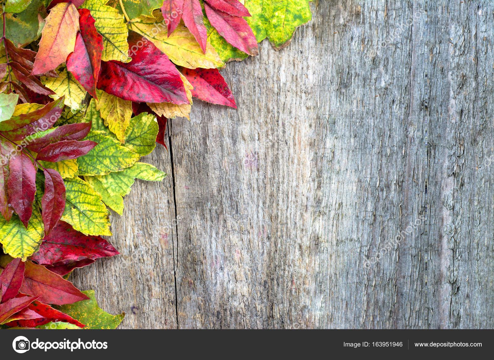 Herbst Wallpaper Blatter Grenze Auf Holzernen Hintergrund