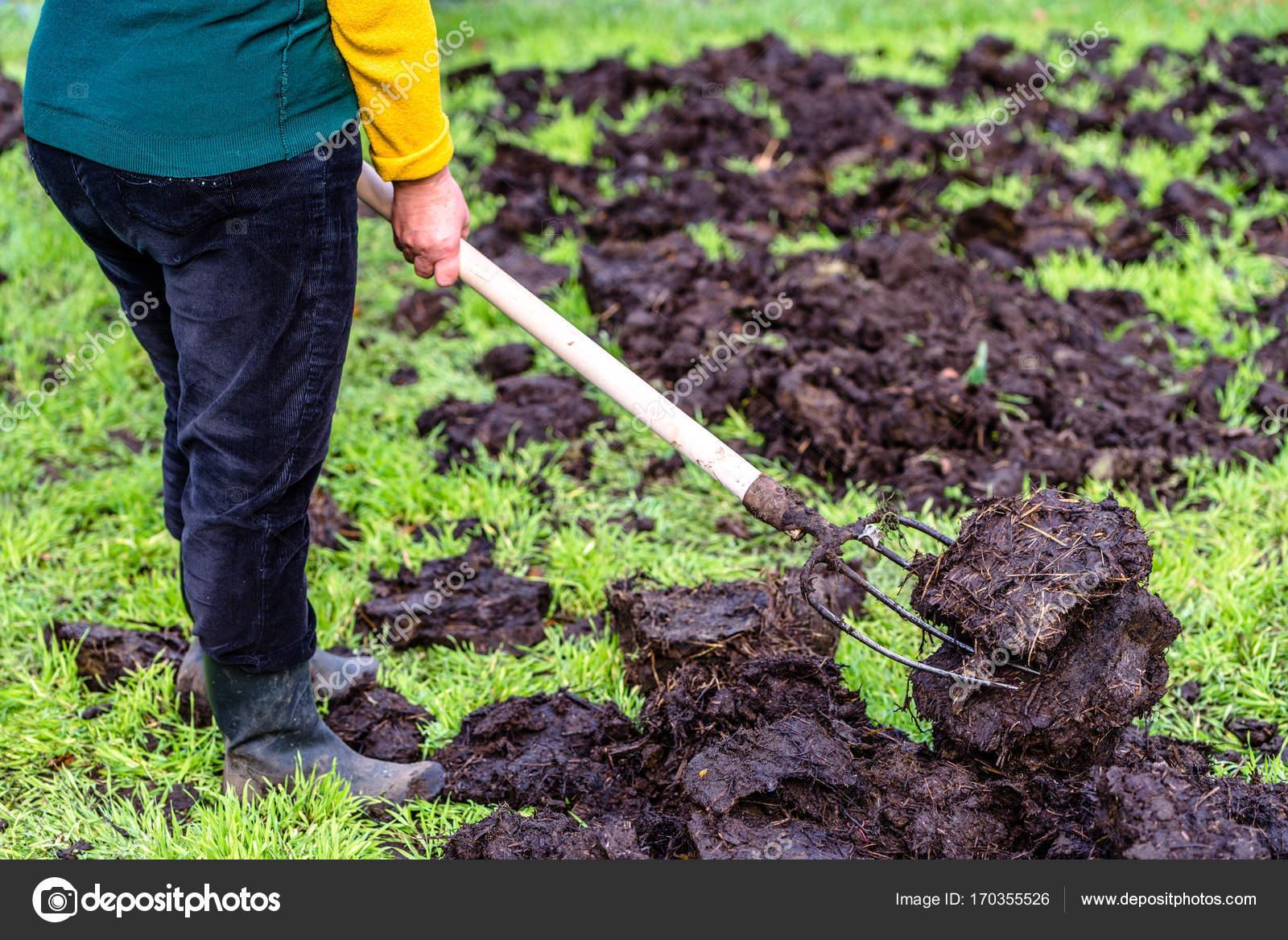 landwirt auf hof arbeiten. organischer dünger für düngung boden