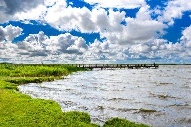 """Картина, постер, плакат, фотообои """"вид на озеро с травой на поле, зеленые весенние пейзажи цветы"""", артикул 179414088"""