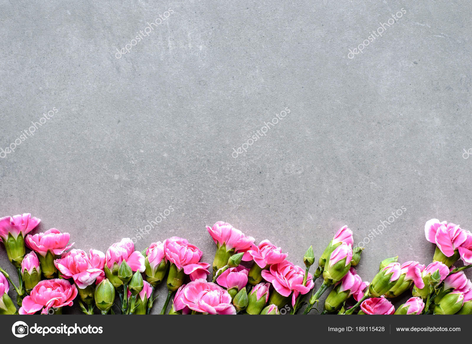 Floral border with spring flowers on gray background flat lay top floral border with spring flowers on gray background flat lay top view stock mightylinksfo