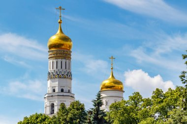 Moscow, Russia - June 02, 2019: Golden domes of Ivan the Great Bell-Tower and Uspenskaya belfry against blue sky with white clouds and green trees in sunlight. Moscow Kremlin architecture