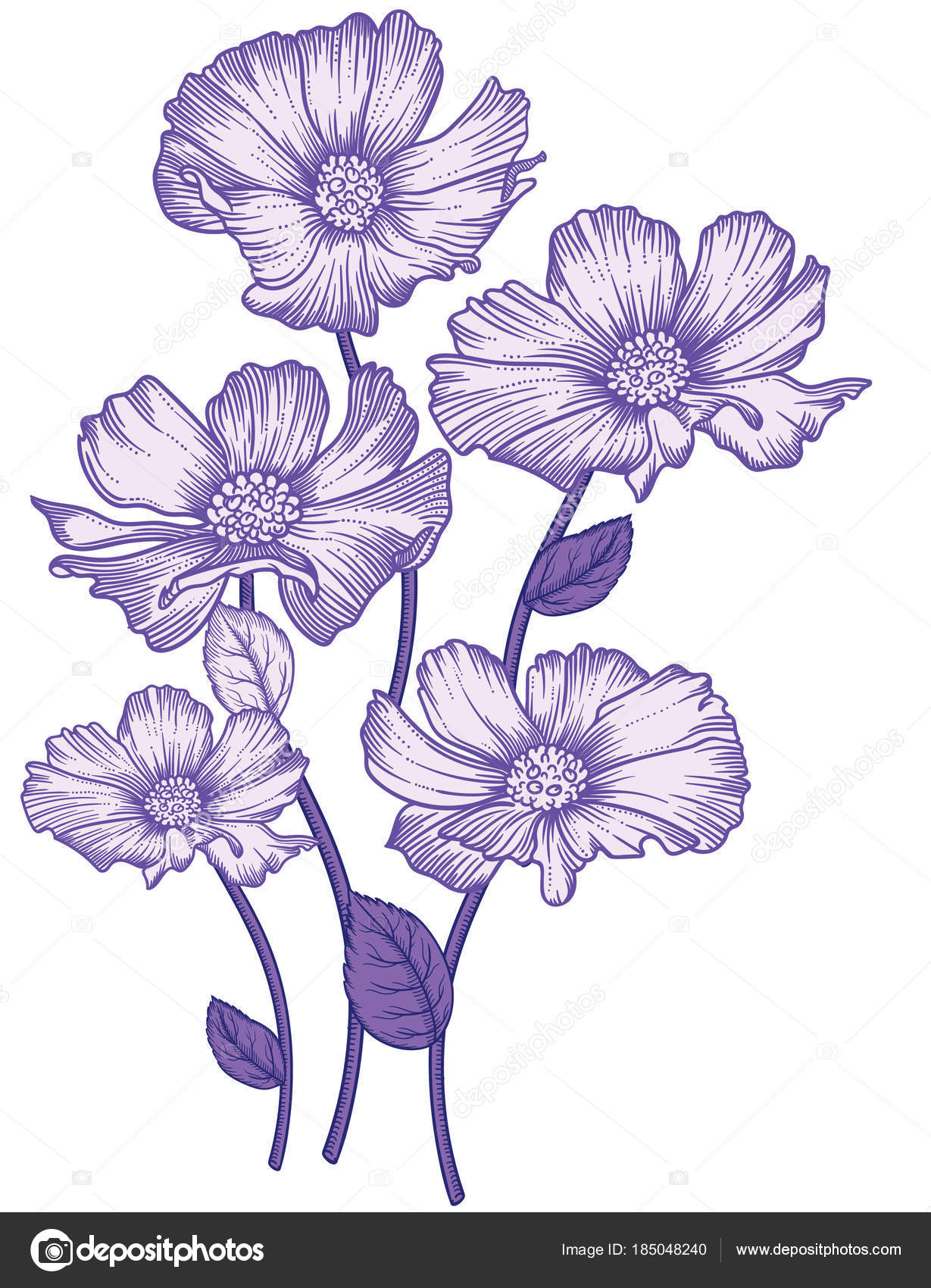 Decorative Flower Drawings: Blooming Forest Flowers , Detailed Hand Drawn Vector