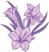 Virágzó liliom virágok, részletes kézzel rajzolt vektoros illusztráció. Romantikus Dekoratív virág rajz. Liliom-line art vázlatos stílus. Minden hiteles egyedi virágzik objektumok elszigetelt fehér background
