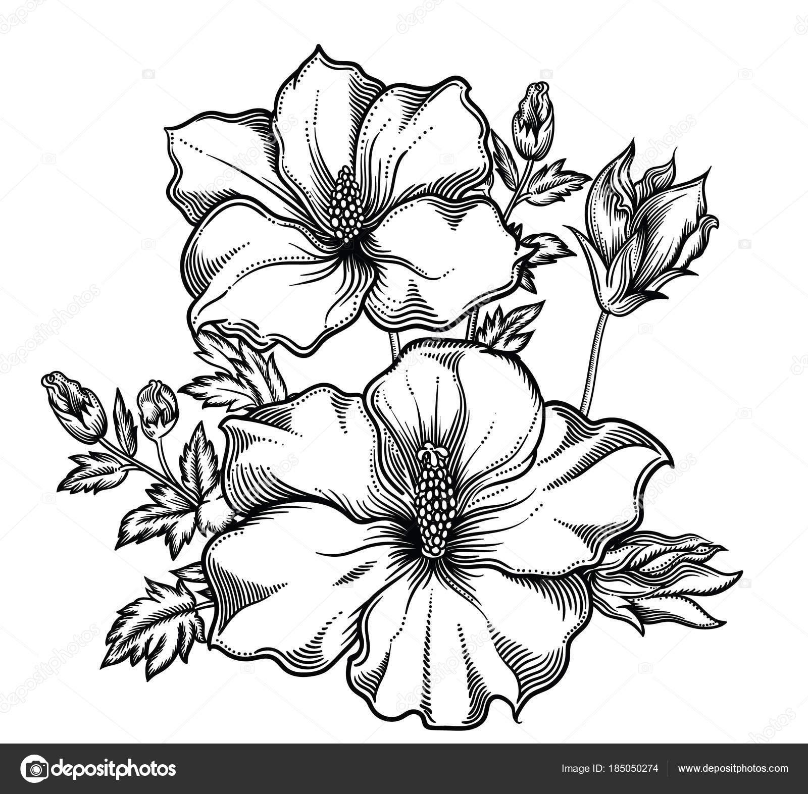 Desenhos De Flores Exoticas Desenhos De Flores Para Imprimir Ou  ~ Imagens Para Quadros De Quarto Para Imprimir Abacaxi