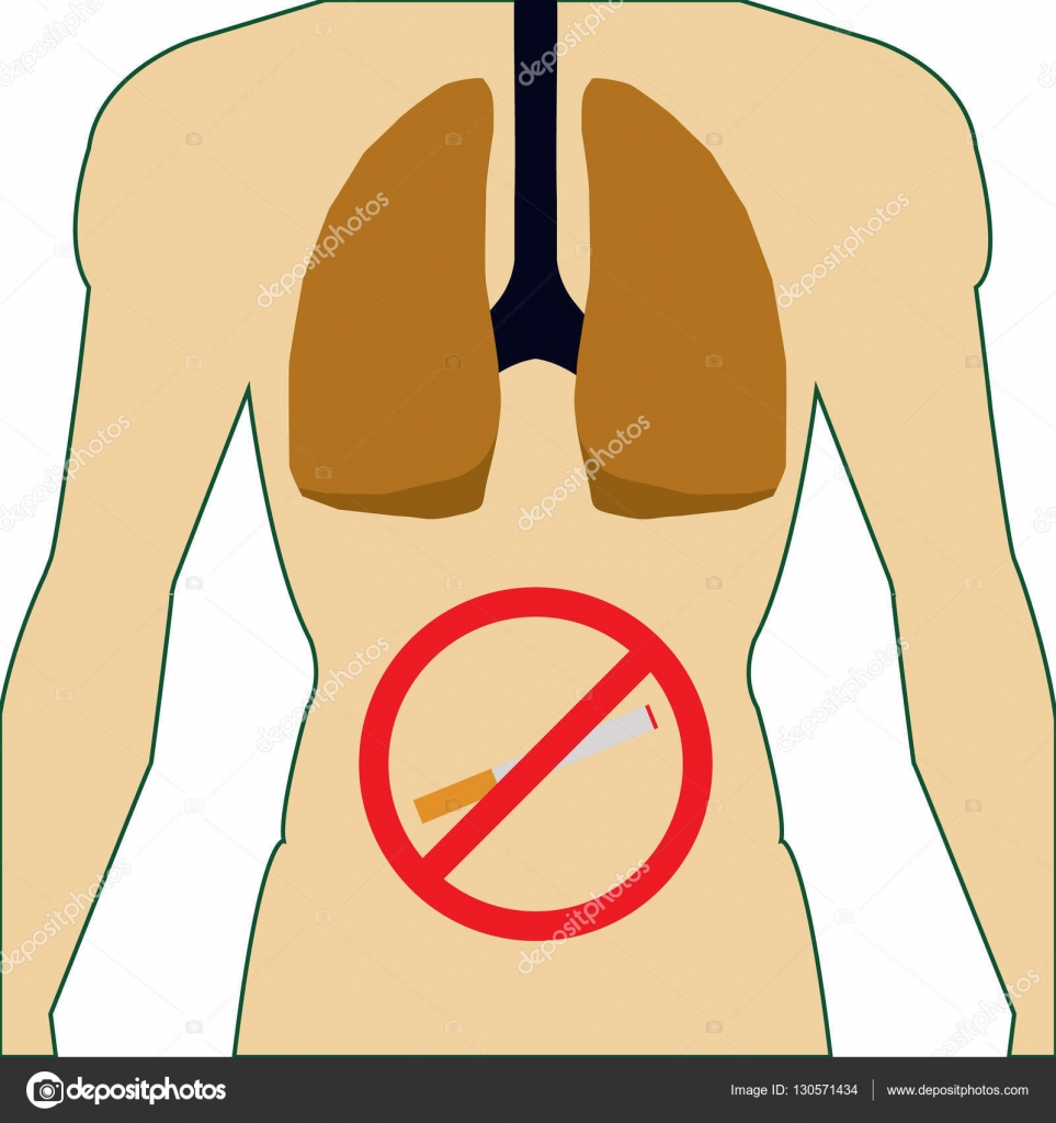 The Lungs Of The Human Body Smoking Cigaretteman