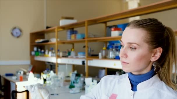 Vědecký výzkumník při pohledu na Petriho misce. Mladý vědec práce v laboratoři. Mikrobiologie experiment