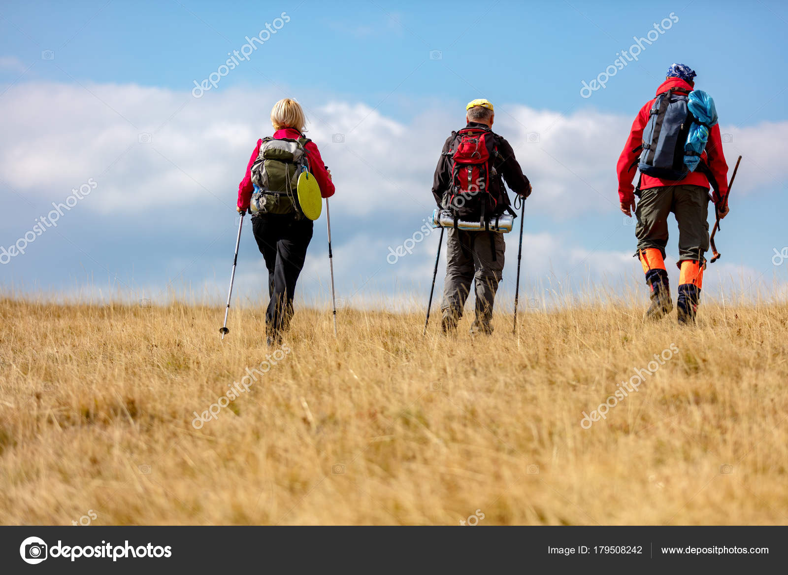 a1272fa623 Rear view shot of young friends in countryside during summer holiday hiking.  Group of hikers