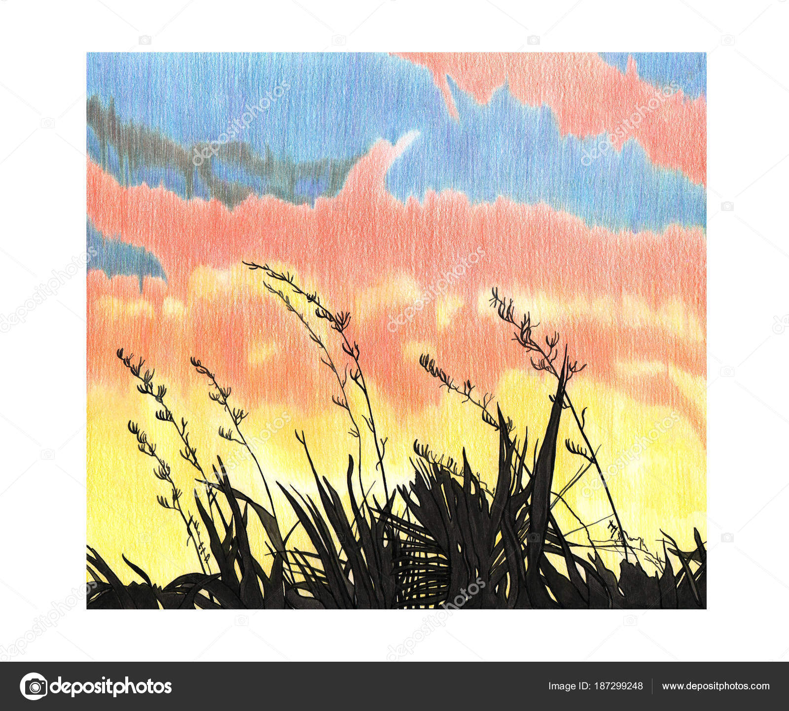 Rucni Kresleni Obrazek Zapadu Slunce Obloha A Rostliny Stock
