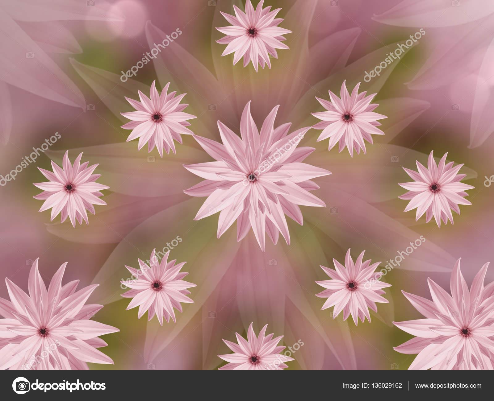 Fondo De Pantalla Flores Rosas: Fondos De Pantalla De Flores Rosas