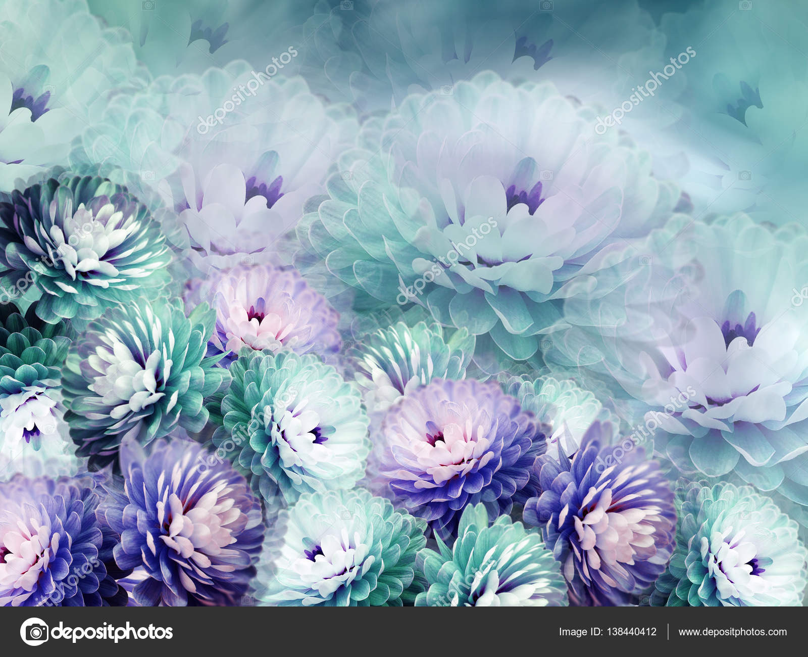Flowers chrysanthemum on blurry background turquoise blue violet flowers chrysanthemum on blurry background turquoise blue violet background floral collage izmirmasajfo
