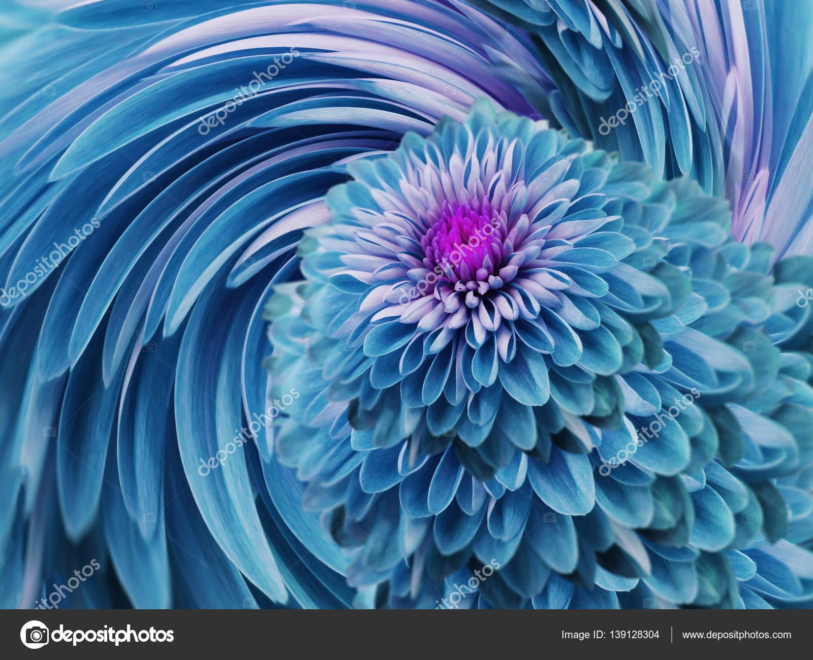 Crisantemo Fiori Turchese Blu Sfondo Blu Turchese Collage Floreale
