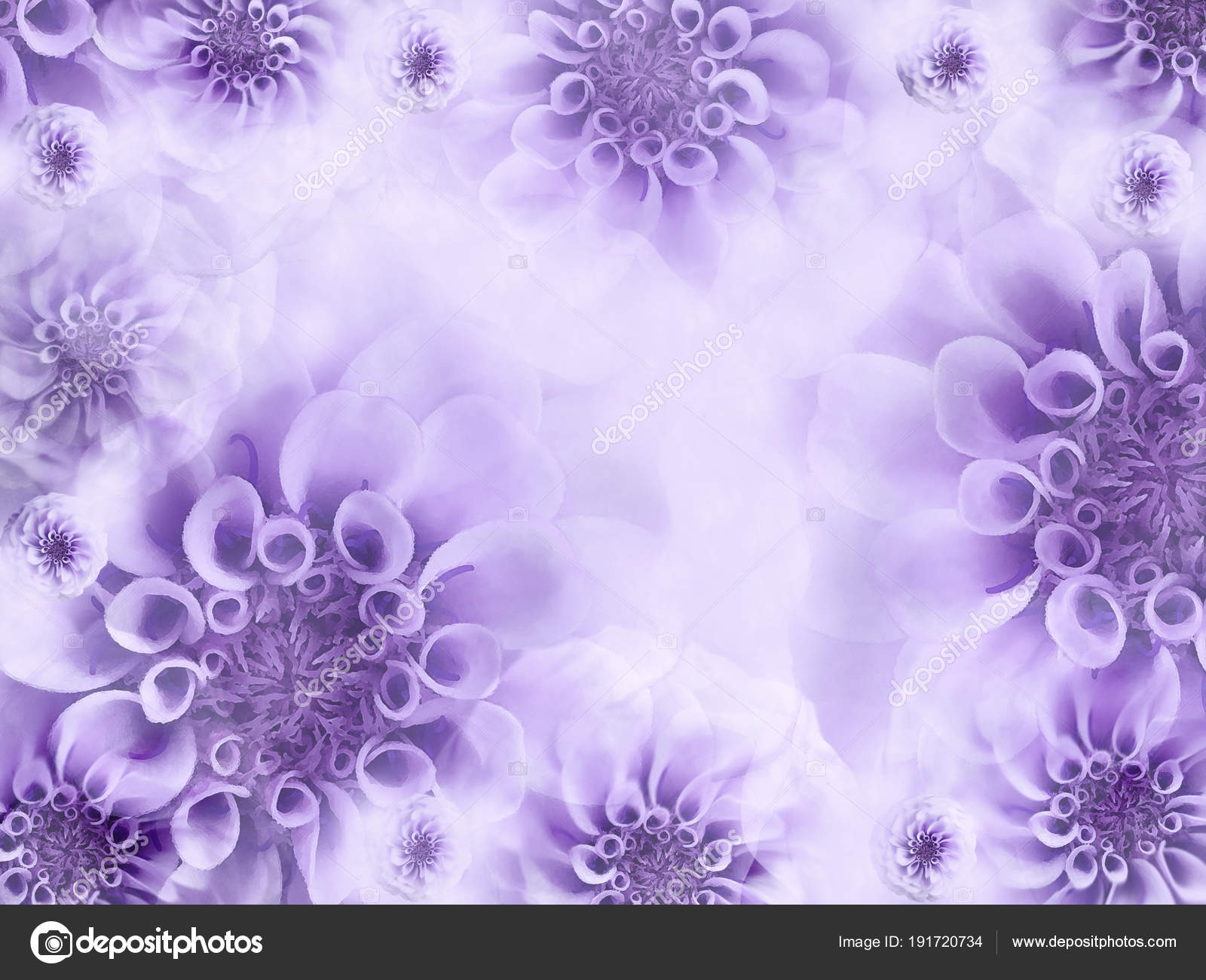Floral White Violet Beautiful Background Wallpapers Light Purple