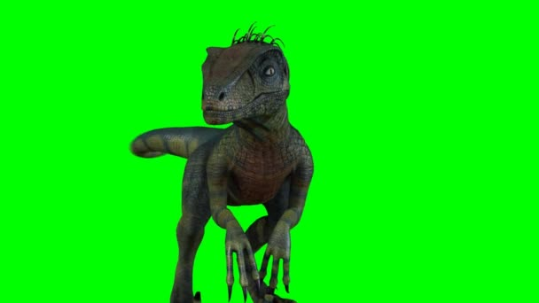 Cartoon dinosaur on green background