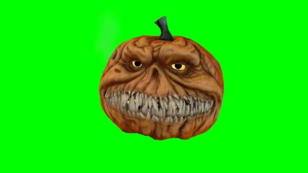 Cartoon pumpkin on green background