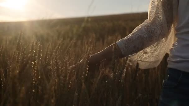 mladá žena v poli pšenice