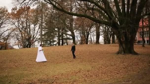 Svatební nevěsta a ženich procházky v parku a líbání.