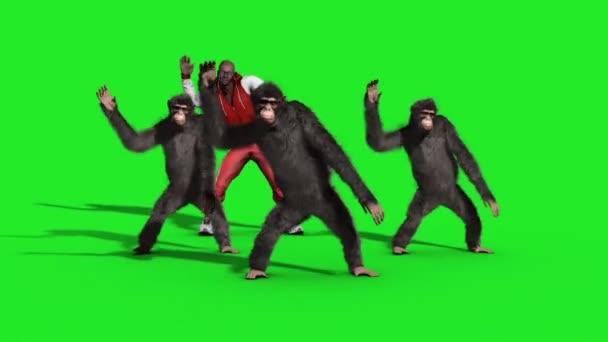 Skupina šimpanz muž House Dance tanečnice zelené obrazovky 3d vykreslování animace zvířata