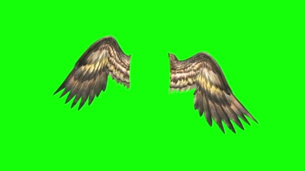 Angyalok madarak szárnyát csapkodó 3d Rendering zöld képernyő