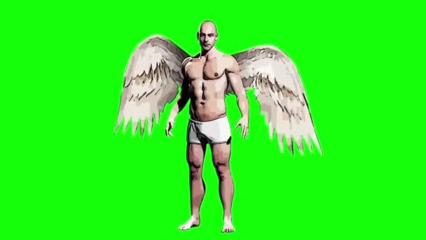 Angyalok szárnyak csapkodó 3d Rendering zöld képernyő