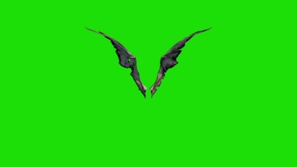 Démon Devil křídla rychle zelené obrazovky 3d rendrování animací