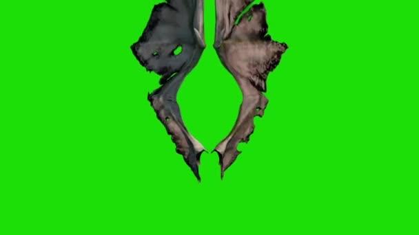 Démon Devil křídla fabion přední 3d rendrování animace