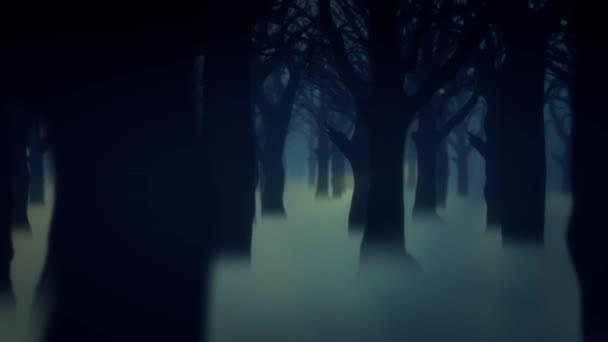 dark forest fog trees animated background wallpaper \u2014 stock videodark forest fog trees animated background wallpaper \u2014 stock video