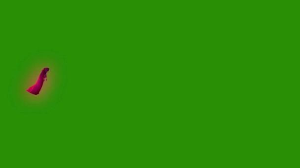 Ghost fantom entitás boszorkány legyek oldalán zöld képernyő 3d megjelenítő animáció