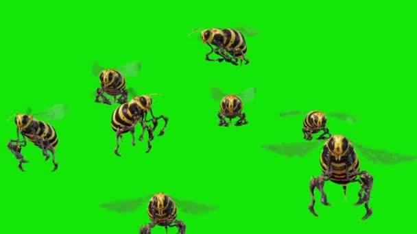 Roj včel vosy létají zelené obrazovky 3d rendrování animací
