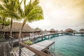 Luxury bungalow in a vacation resort in Bora Bora