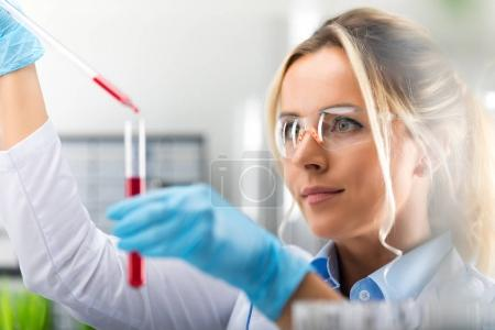 Photo for Young attractive female scientist in protective glasses and gloves dropping a red liquid substance into the test tube with a long glass pipette in the scientific chemical laboratory - Royalty Free Image