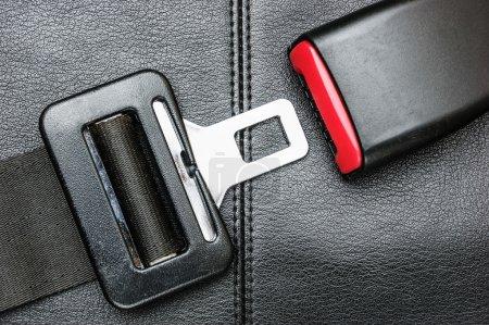 seat belt on black leather