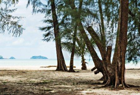 Tropical beach on the island in Thailand