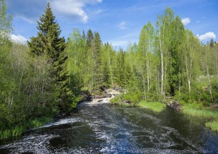 Photo for Landscape with a river in the forest of Karelia - Royalty Free Image