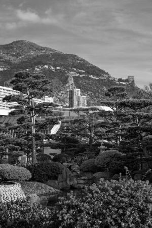 Japanese garden in Monte Carlo