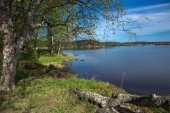 Picturesque landscape on the shore of a lake in Karelia