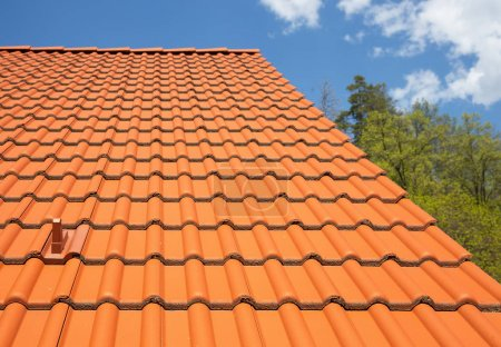 modern tiled roof for a country house