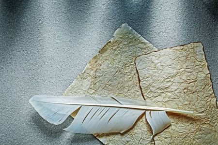 Ancient crumpled paper sheet plume on grey surface