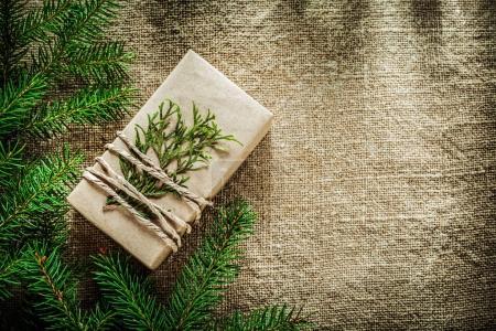 Gift box thuya pine tree branch on bagging background