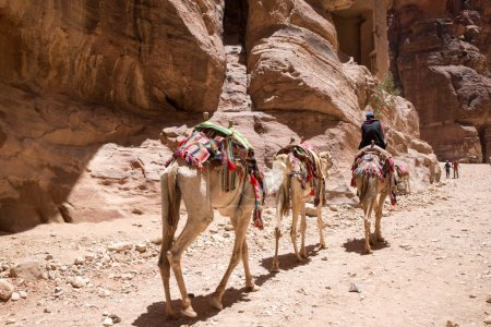 Historical and archaeological city Petra