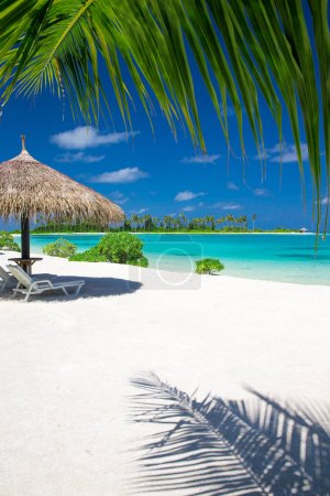 Photo for Beautiful beach at Maldives, tropical landscape - Royalty Free Image