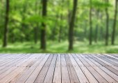 wooden deck table with forest